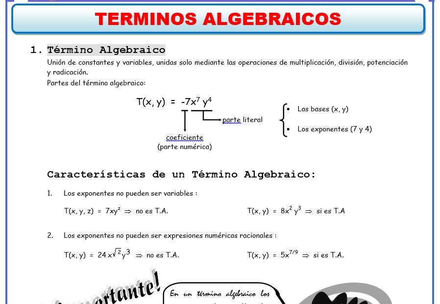 Ejercicios de Algebra - ficha de Termino Algebraico
