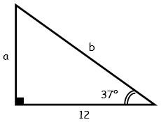 Problemas de Triangulos Notables para Tercer Grado