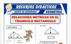 Ficha de Ejercicios de Relaciones Métricas en Triangulos Rectangulos para Quinto Grado de Secundaria