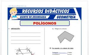 Ficha de Problemas de Poligonos para Quinto Grado de Secundaria