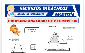 Ficha de Proporcionalidad de Segmentos para Quinto Grado de Secundaria