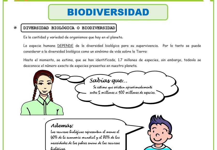 Marco Conceptual de las Fichas de ejercicios de Biologia para Primer Año