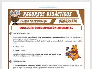 Ficha de Contaminación del Medio Ambiente para Cuarto de Secundaria