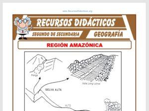 Ficha de La Región Amazónica para Segundo de Secundaria